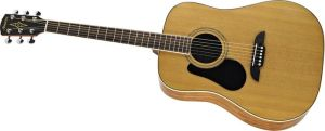 Click to buy Alvarez Guitars: RD16L Left Handed from Musician's Friends!