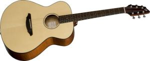 Click to buy Breedlove Guitars: Passport C200/SMP from Musician's Friends!