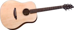 Click to buy Breedlove Guitars: Passport D200/SMP from Musician's Friends!