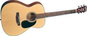 Click to buy Blueridge Guitars: BR43 from Musician's Friends!