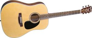 Click to buy Blueridge Guitars: BR60 from Musician's Friends!