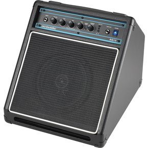 Acoustic Guitar Amps: Acoustic AG15 15W Combo