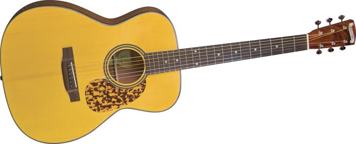 Click to buy Blueridge Guitars: BR143A from Musician's Friends!