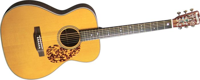 Click to buy Blueridge Guitars: BR163A from Musician's Friends!