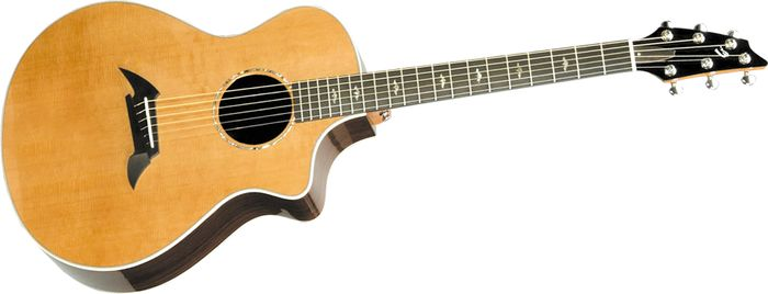Breedlove Guitars Focus