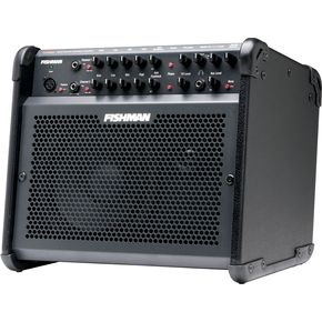 Click to buy Acoustic Guitar Amps: Fishman Loudbox 100 from Musician's Friends!