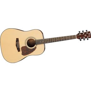 Click to buy Ibanez Acoustic Guitar: PF30S from Musician's Friends!