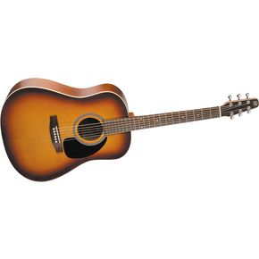Click to buy Seagull Guitars: Coastline S6 GT Dreadnoughtfrom Musician's Friends!