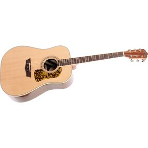 Click to buy Washburn Acoustic Guitars: D64SW Dreadnought from Musician's Friends!
