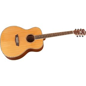 Click to buy Washburn Acoustic Guitars: WG16S Grand Auditorium from Musician's Friends!