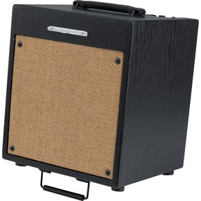 Click to buy Acoustic Guitar Amps: Ibanez Troubadour T35 35W from Musician's Friends!